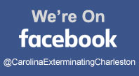 Carolina Exterminating is on Facebook