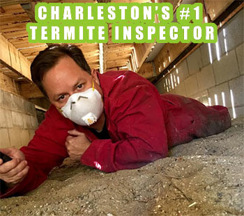 Charleston's #1 Termite Inspector Drew Leilich of Carolina Exterminating in a client's crawl space